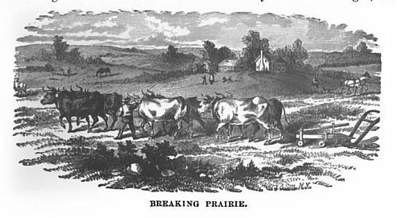 """Breaking Prairie"" from History of Jasper County, Iowa, Western Historical Co.,1878. Page 63, GoogleBooks."