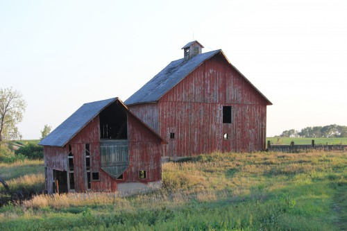 Roberts Family Farm- barns in 2012.