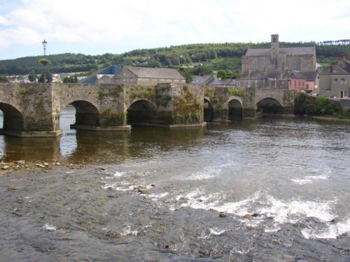 Old bridge at Carrick-on-Suir, via Wikimedia. (Click to enlarge.)