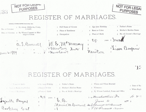 Marriage license of Will and Lynette Payne, 6 June 1899.