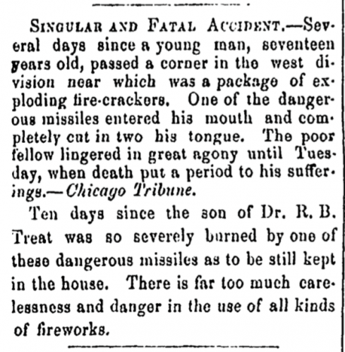"""Singular and Fatal Accident"" in Janesville (Wisconsin) Daily Gazette, Vol. 7, No. 89, Page 3, Column 1."